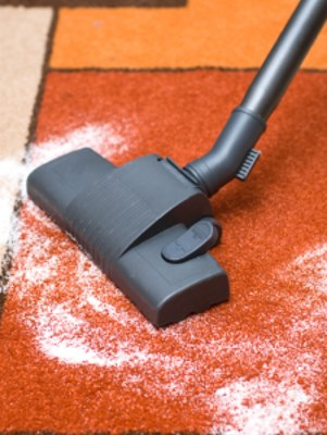Carpet odor removal in Madison Park by Continental Carpet Care, Inc.