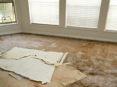 Water damage restoration in Greenwood by Continental Carpet Care, Inc.